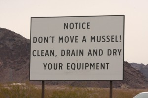 Instructions to boaters at Lake Mead, Nevada to prevent quagga mussel transportation. Source: JN Stuart. (CC BY-NC-ND 2.0).
