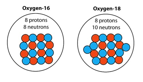 The two most abundant oxygen isotopes