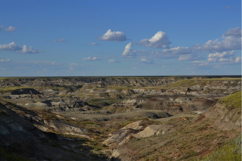 The Badlands of Dinosaur Provincial Park.