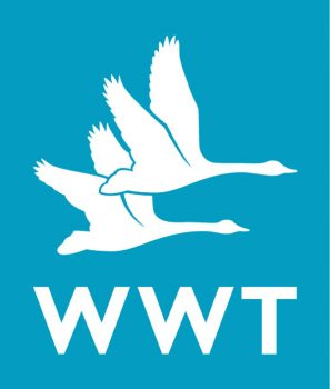 Wildfowl & Wetlands Trust logo